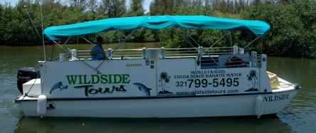 Wildside Boat Tours